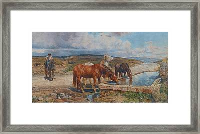Horses Drinking From A Stone Trough, By Enrico Coleman Framed Print