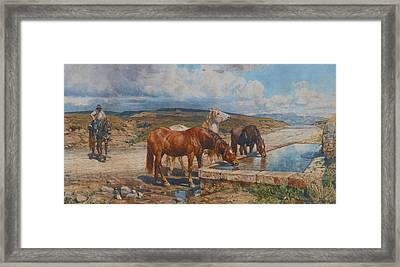 Horses Drinking From A Stone Trough Framed Print by Enrico Coleman