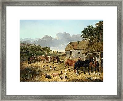 Horses Drinking From A Water Trough, With Pigs And Chickens In A Farmyard Framed Print by John Frederick Herring Jr