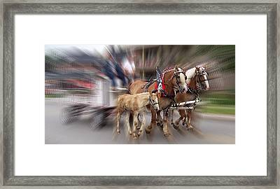 Horses In Motion Framed Print by David and Lynn Keller