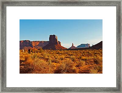Horses In The Valley Framed Print by PhyllisAnn Mains