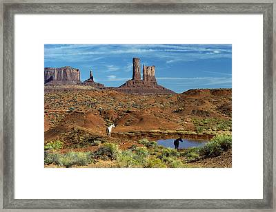 Horses Near A Water Hole Framed Print by Panoramic Images