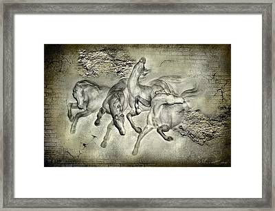Horses Framed Print by Svetlana Sewell