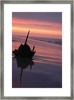 Horseshoe At Sunset Framed Print by See Me Beautiful Photography