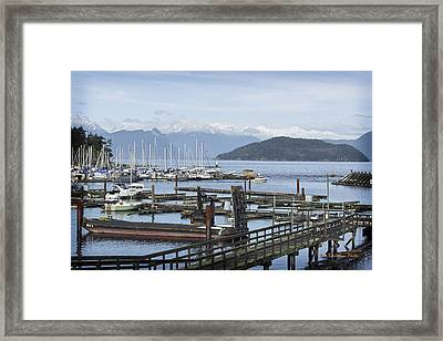 Horseshoe Bay Framed Print by Tom Buchanan