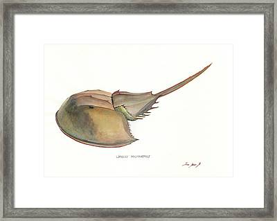 Horseshoe Crab Framed Print
