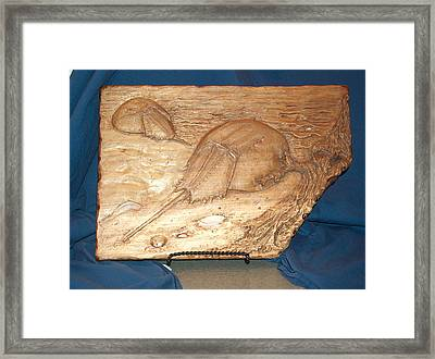 Horseshoe Crabs Framed Print by Doris Lindsey
