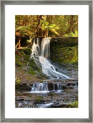 Horseshoe Falls Tasmania Framed Print by Bill  Robinson