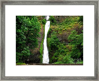 Horsetail Falls Framed Print by PJ  Cloud
