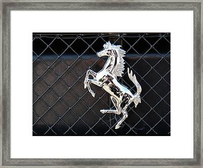 Framed Print featuring the photograph Horsey by John Schneider