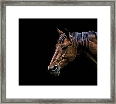 Horsing Around Framed Print by Gary Smith