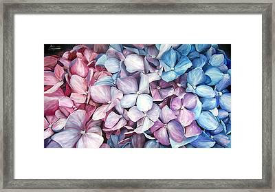 Hortensias Framed Print