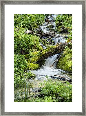 Horton Springs Framed Print