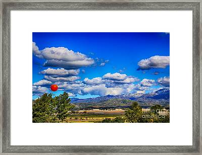 Hot Air Balloon Ride In Orange County Framed Print by Mariola Bitner