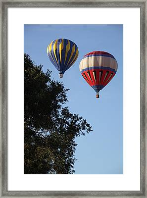 Hot Air Balloons Over Dansville Ny Framed Print