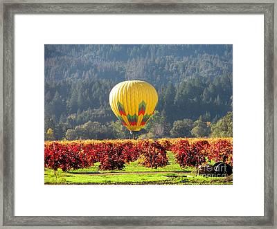 Hot Air In The Valley Framed Print by Gail Salituri