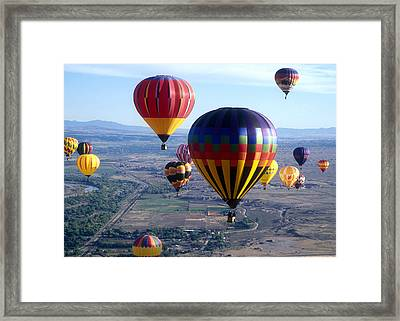 Hot Air Over Albuquerque Framed Print by Dale Hart