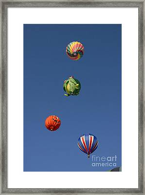 Hot Air Rally Framed Print by Dennis Hammer