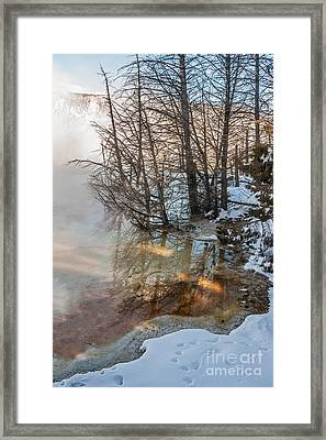 Hot And Cold In Yellowstone Framed Print