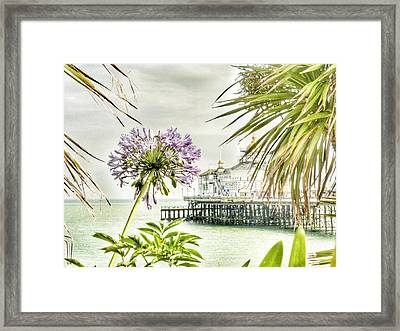 Hot Eastbourne Summer Framed Print by Connie Handscomb