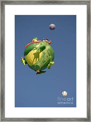 Hot Frog Framed Print by Dennis Hammer