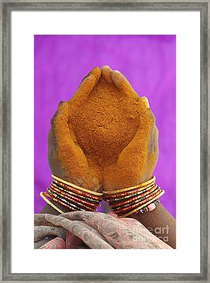 Hot Hands  Framed Print by Tim Gainey