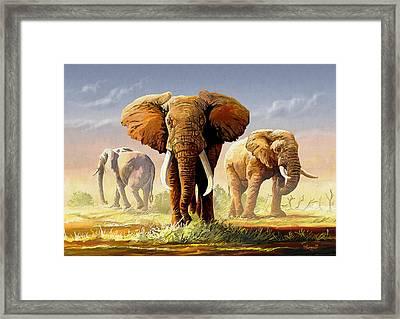 Hot Mara Afternoon Framed Print