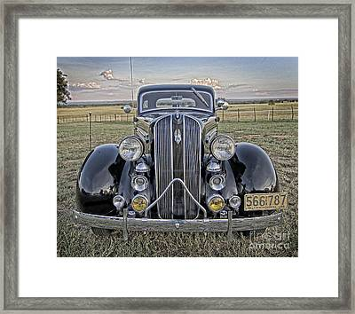 Hot Off The Grill Framed Print