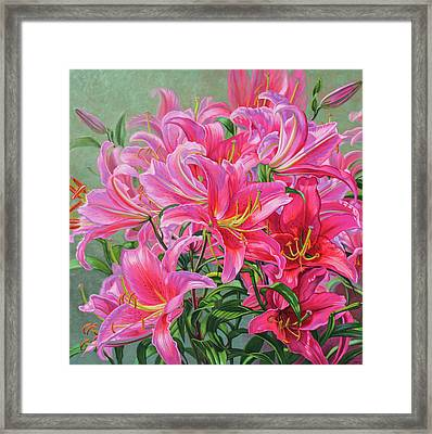 Hot Pink Asiatic Lilies Framed Print by Fiona Craig