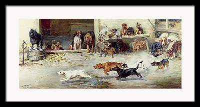 Dog Race Paintings Framed Prints