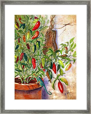 Hot Sauce On The Vine Framed Print by Marilyn Smith