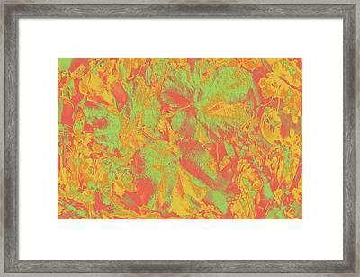 Framed Print featuring the photograph Hot Shot Garden by Nareeta Martin
