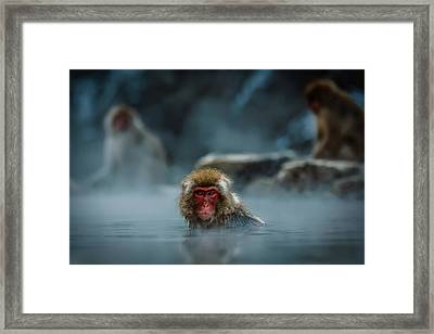 Hot Springs Delight Framed Print