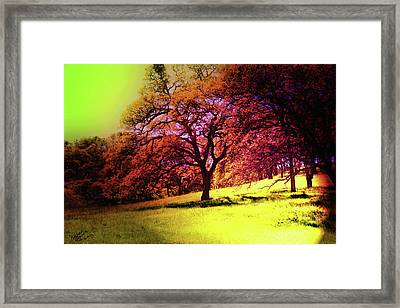 Hot Summer  Framed Print by Monroe Snook