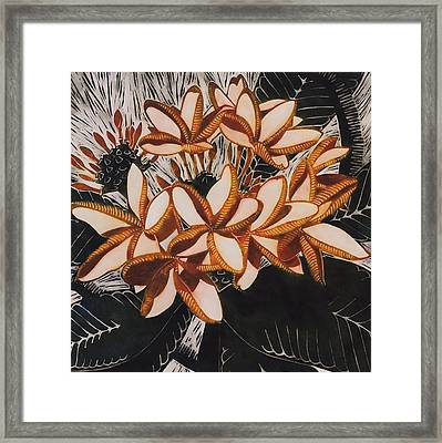 Hothouse Flowers Framed Print by Susan Lishman