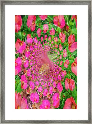Hothouse Vortex Framed Print