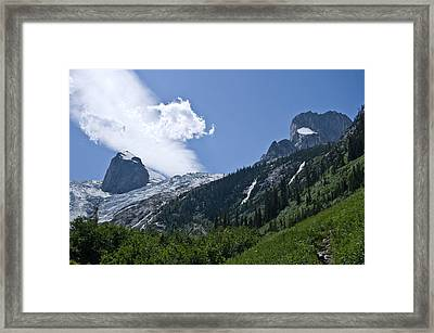 Hounds Tooth Framed Print
