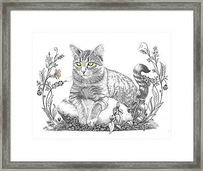 House Cat Framed Print by Murphy Elliott