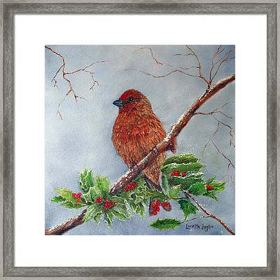House Finch In Winter Framed Print