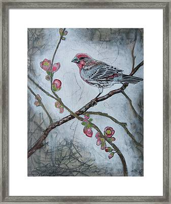 Framed Print featuring the mixed media House Finch by Sheri Howe