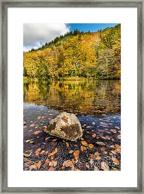 House In The Forest Framed Print by Adrian Evans