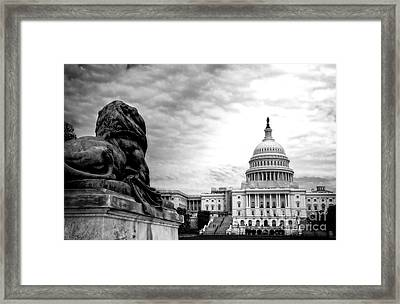 House Of Lions Framed Print
