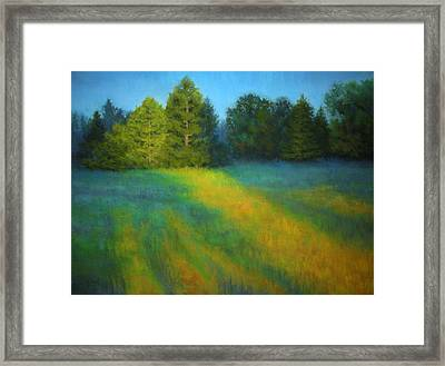 House Of The Rising Sun Framed Print by Paula Ann Ford