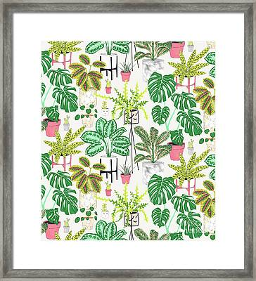 House Plants Framed Print by Jacqueline Colley