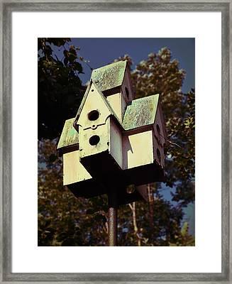 House Sparrow Framed Print by JAMART Photography
