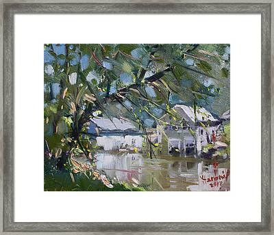 Houses Along The Canal Framed Print by Ylli Haruni
