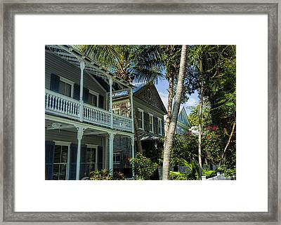 Houses In The Palms  Framed Print by Dale Wilson