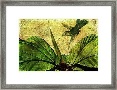 Framed Print featuring the digital art Hover by Margaret Hormann Bfa