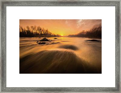 Hovering Over The River Framed Print by Davorin Mance