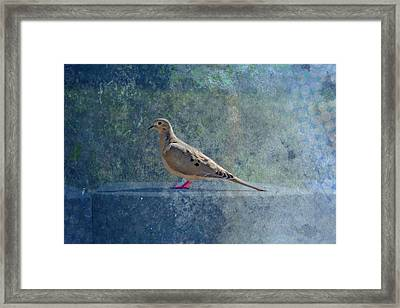 How Can You Just Leave Me Standing Framed Print